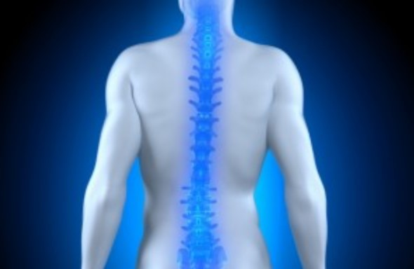 WEBINAR : Spinal Augmentation in 2020 – 25th November, from 6.00 to 8.00 p.m. (CET)